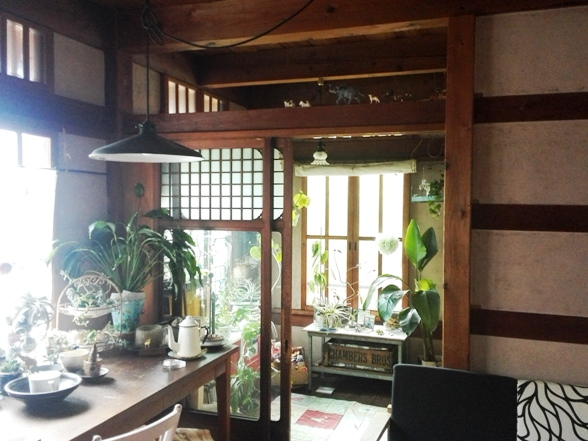 古建具 観葉植物